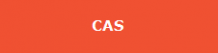 IB-CAS